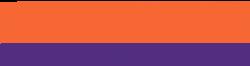 Clemson University's School Logo