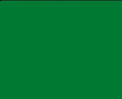 Missouri University of Science and Technology's School Logo