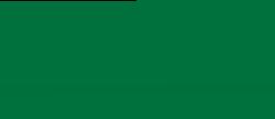 University of North Carolina at Charlotte's School Logo